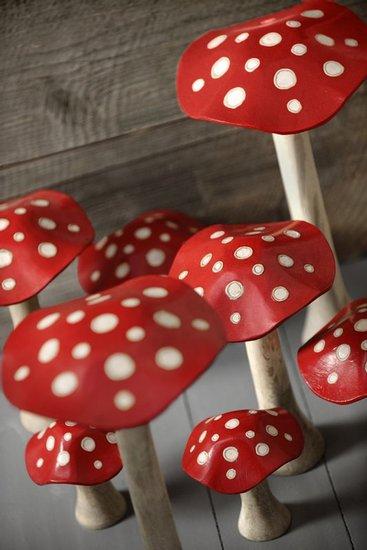 champignons athezza