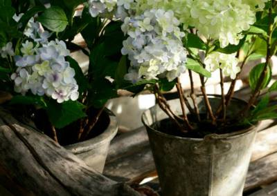 hortensias-artificiels-jardin-damandine
