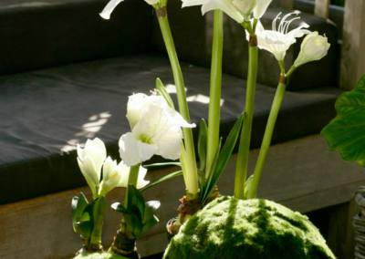 plante-artificielle-jardin-damandine
